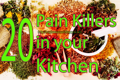 20 Pain Killers in your Kitchen