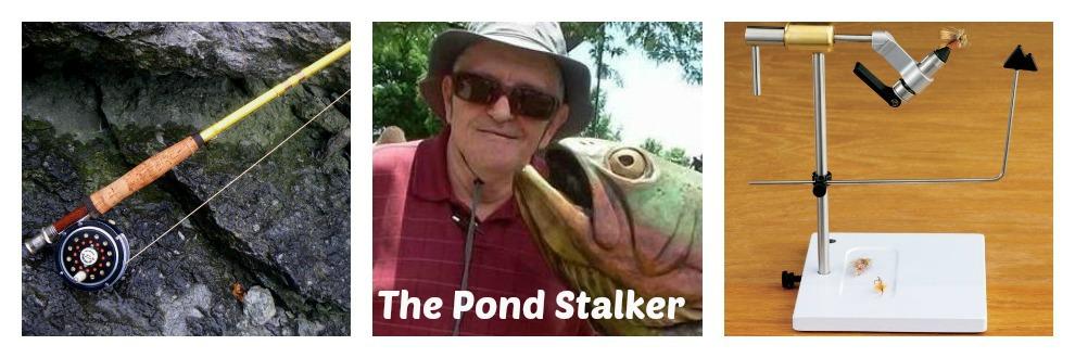 The Pond Stalker
