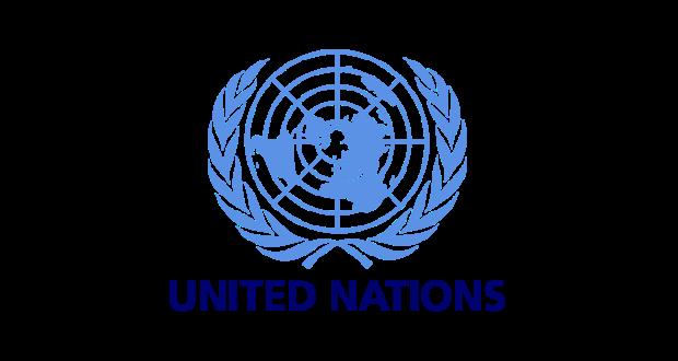 Ηχηρό μήνυμα ΟΗΕ υπέρ του δημοψηφίσματος και κατά ΔΝΤ και ΕΕ