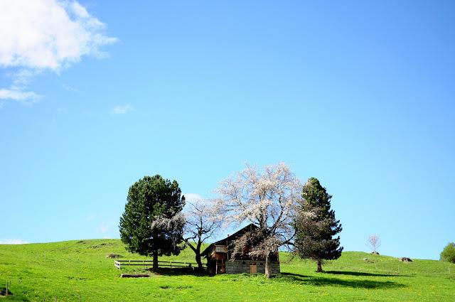 randonnée nendaz sion switzerland