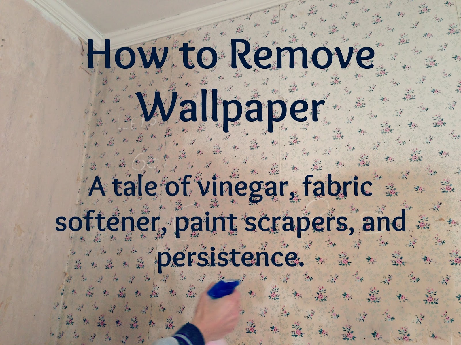 wallpaper border removal tips