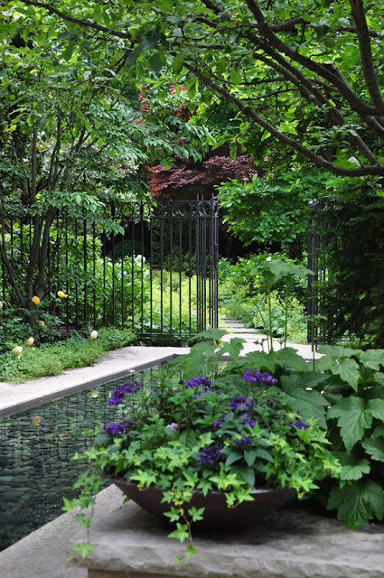 Three dogs in a garden pin ideas small water features for Pond shade ideas