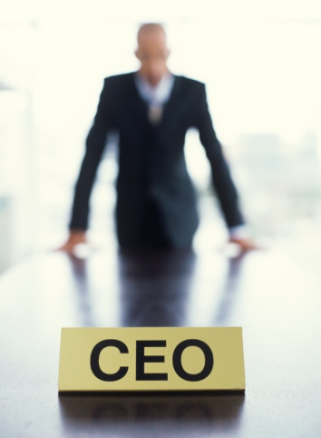 if i were the ceo of a company essay The walt disney company analysis  disclaimer: this essay has been submitted by a student  former chief executive officer michael eisner was quoted as saying, .