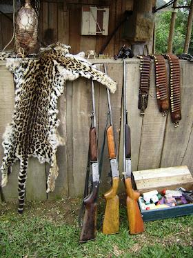 Flagrante de crime contra a fauna
