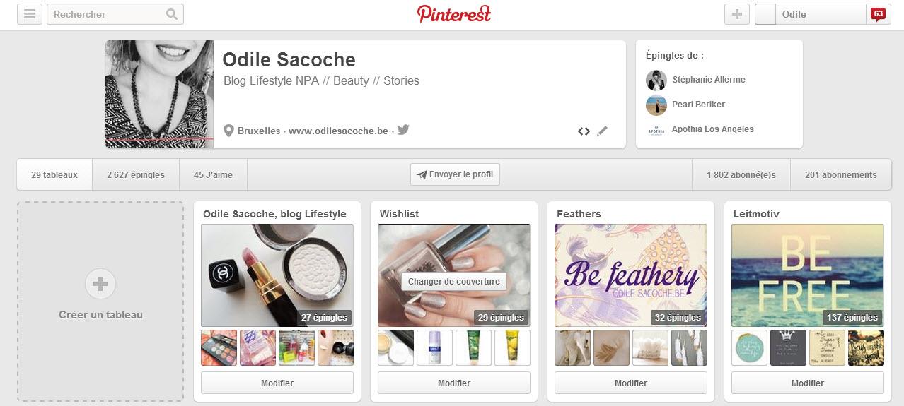capture d'écran interface compte perso Pinterest