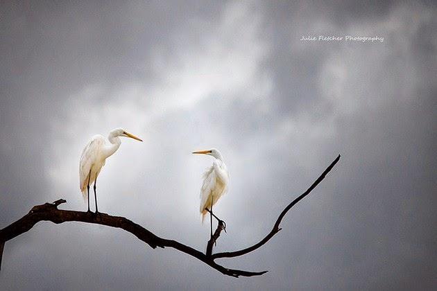 landscape-photography-3
