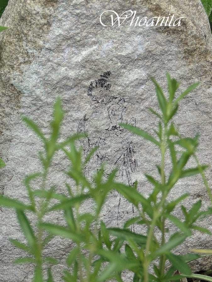 Granitowy głaz i japońska matka. Kamień. Transfer.