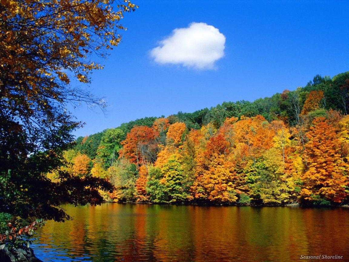 http://1.bp.blogspot.com/-wVFtrDh4PzU/TZR1-38KyII/AAAAAAAACiU/_bD4NCDY7ZY/s1600/nature-wallpaper-120.jpg