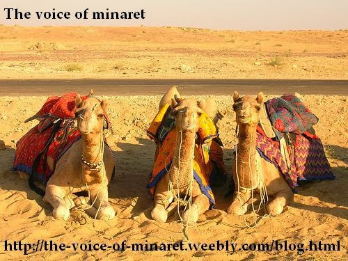 Тhe voice of minaret