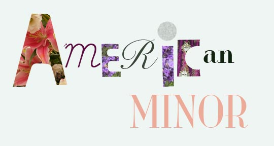 The American Minor