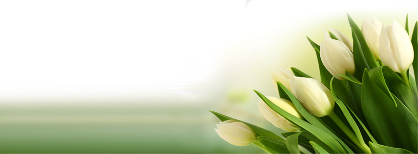 flower bouquet facebook cover