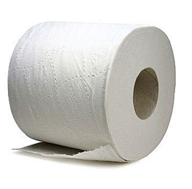Mesmerizing What Did People Use Before Toilet Paper Images - Best ...