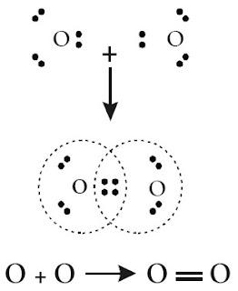 Pembentukan ikatan kovalen rangkap dua dalam molekul O2