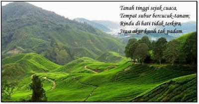 Pantun Tentang Lingkungan Alam Indonesia