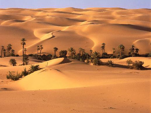 Room 5 world history the geography of the arabian peninsula the desert is dotted with oases areas where fresh water is available oasis are important because they provide plant life and shade as well sciox Images