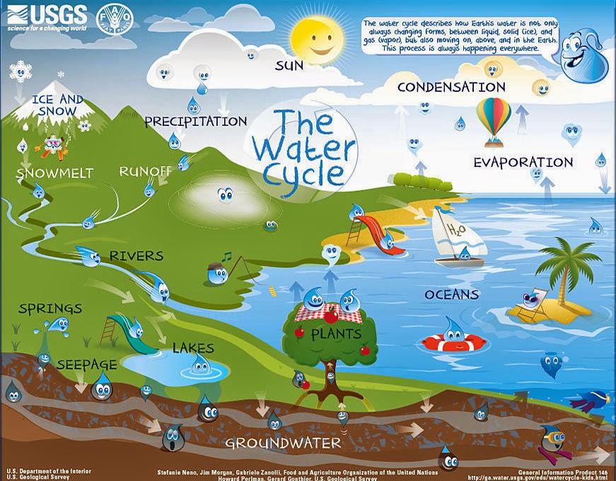 Mr. Gantt's Earth Science Lab Blog: 5th Grade-Week 3 Water Cycle