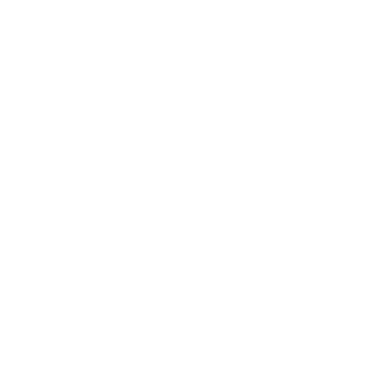 THE SHOES | ELECTRO POP DUET
