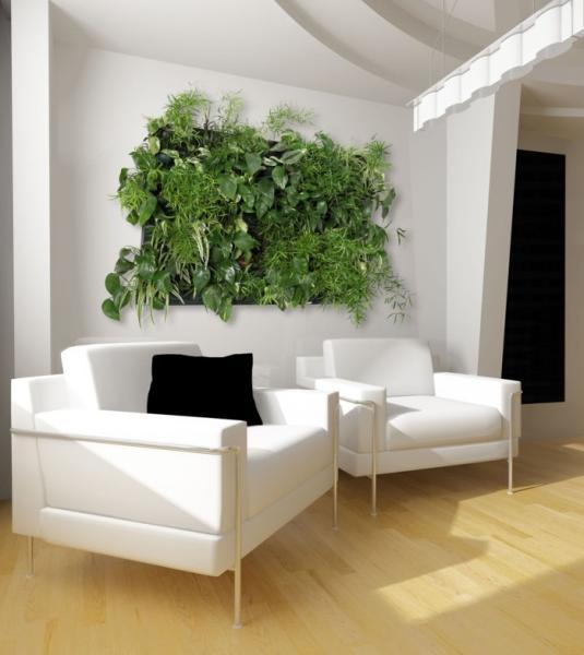 los jardines verticales tambin se pueden meter en nuestras casas con diseos ms o menos complicados incluso se pueden comprar como si fueran un cuadro