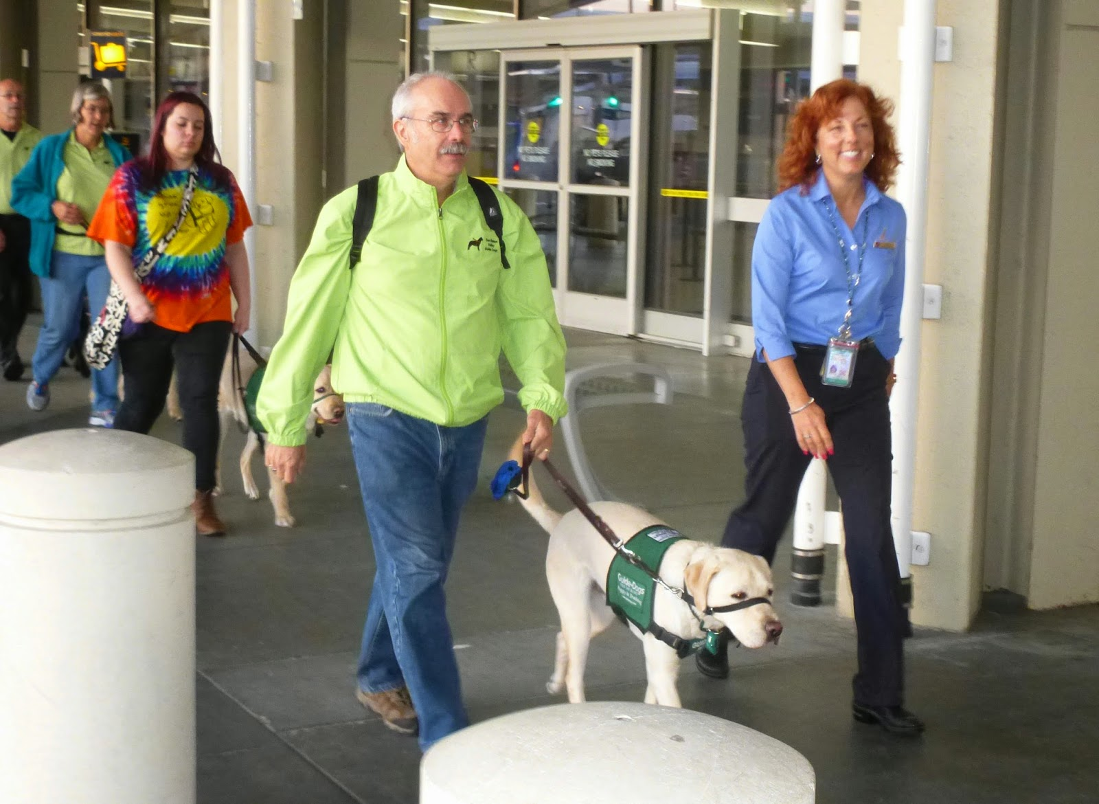 An Alaska Airlines female employee with her badge walks alongside a GDB male puppy raiser with a yellow Lab (wearing the green puppy coat) outside of the airport along the walkway.