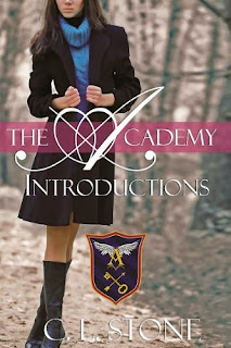 http://www.amazon.com/Academy-Introductions-Year-One-Book-ebook/dp/B00ASPRPXM/ref=la_B0095VSC9Q_1_1?s=books&ie=UTF8&qid=1388790743&sr=1-1