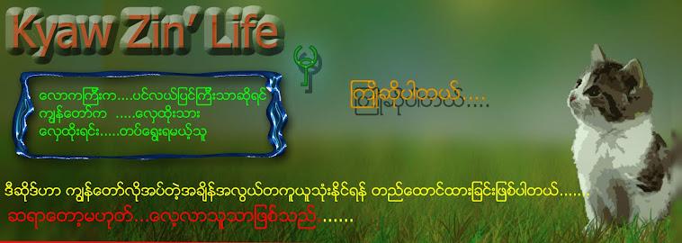 Kyaw zin'Life