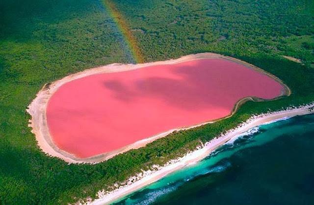 The pink Lake - Hiller Lake, Australia
