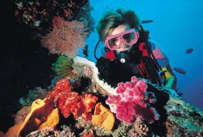 La posibilidad de gozar de las profundidades del Océano Índico practicando snorkling o submarinismo
