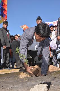 Presidente Morales, participa de la campaña de ferestacion