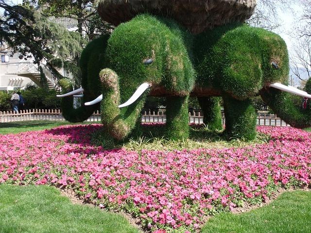 Animales realizados con plantas naturales en dise os de for Jardines naturales pequenos