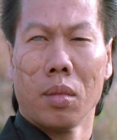 bolo yeung about bruce leebolo yeung 2016, bolo yeung kino, bolo yeung wiki, bolo yeung film, bolo yeung википедия, bolo yeung 2017, bolo yeung gif, bolo yeung family, bolo yeung 2015, bolo yeung биография, bolo yeung movies, bolo yeung training, bolo yeung фильмы, bolo yeung imdb, bolo yeung height weight, bolo yeung about bruce lee, bolo yeung gym, bolo yeung tai chi, bolo yeung twitter, bolo yeung muscle