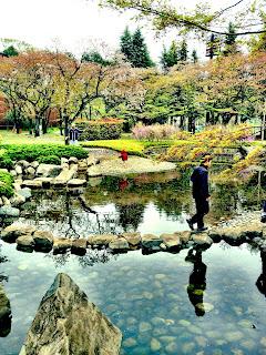tadpole pond in Ryounan Kouen near Keio Hachioji in spring