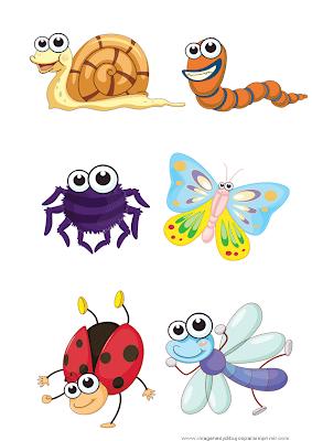 Laminas de insectos para imprimir
