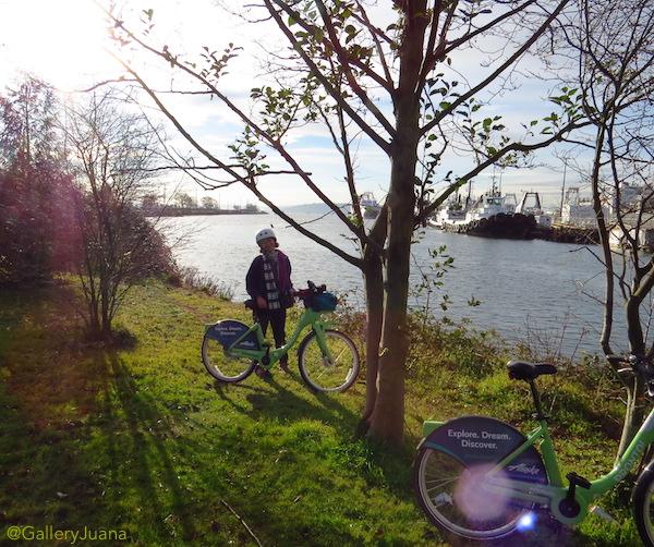 elliott bay trail, pronto bikes
