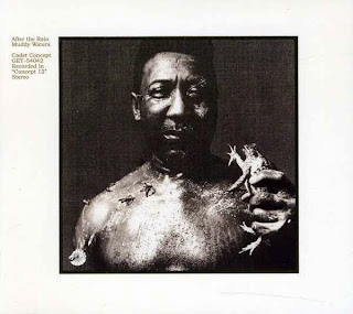 Muddy Waters, After the Rain
