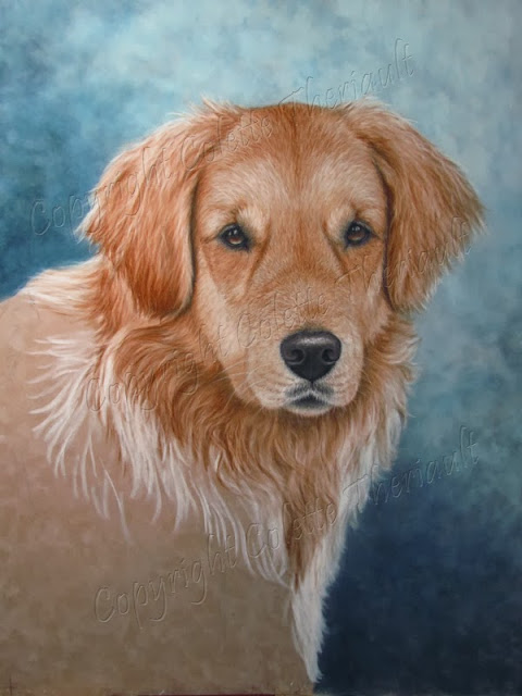 Golden Retriever Portrait painting in pastel by Canadian Pet Portrait Artist Colette Theriault