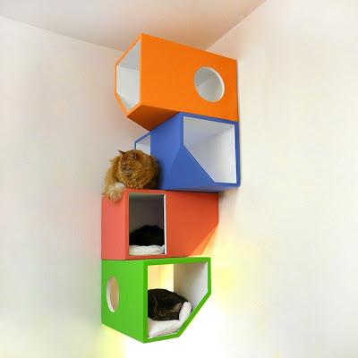 Rumah Kucing 2