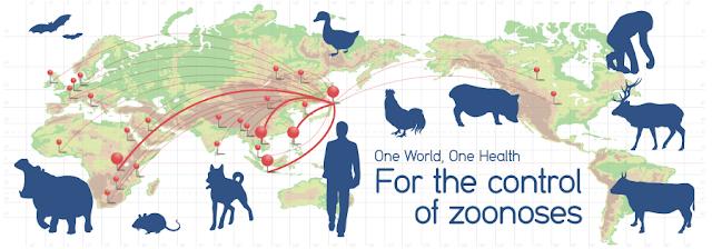 Bệnh lây nhiễm từ động vật có mặt trên khắp thế giới.