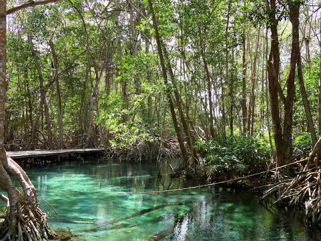 Agua esmeralda