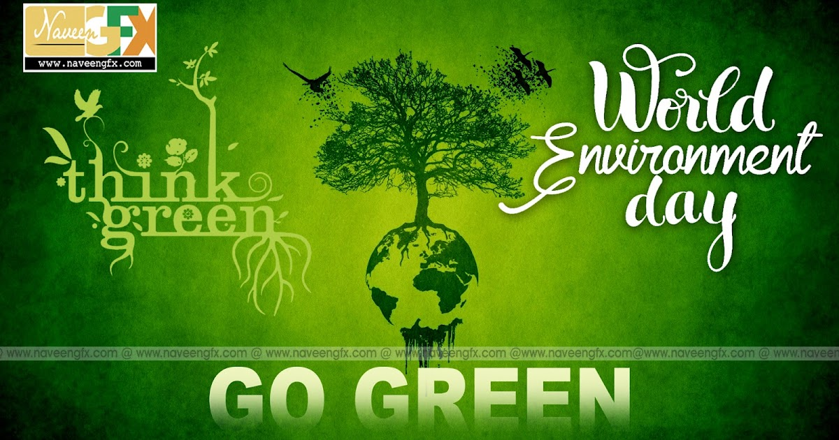 Ways Kids Can Help Save Trees - GoExploreNaturecom