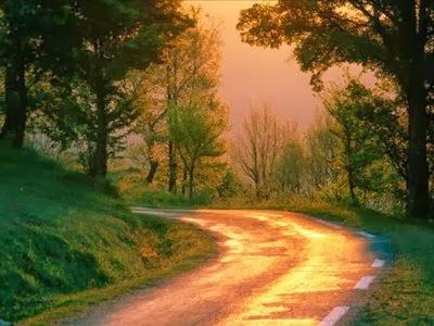 Abrir novos caminhos