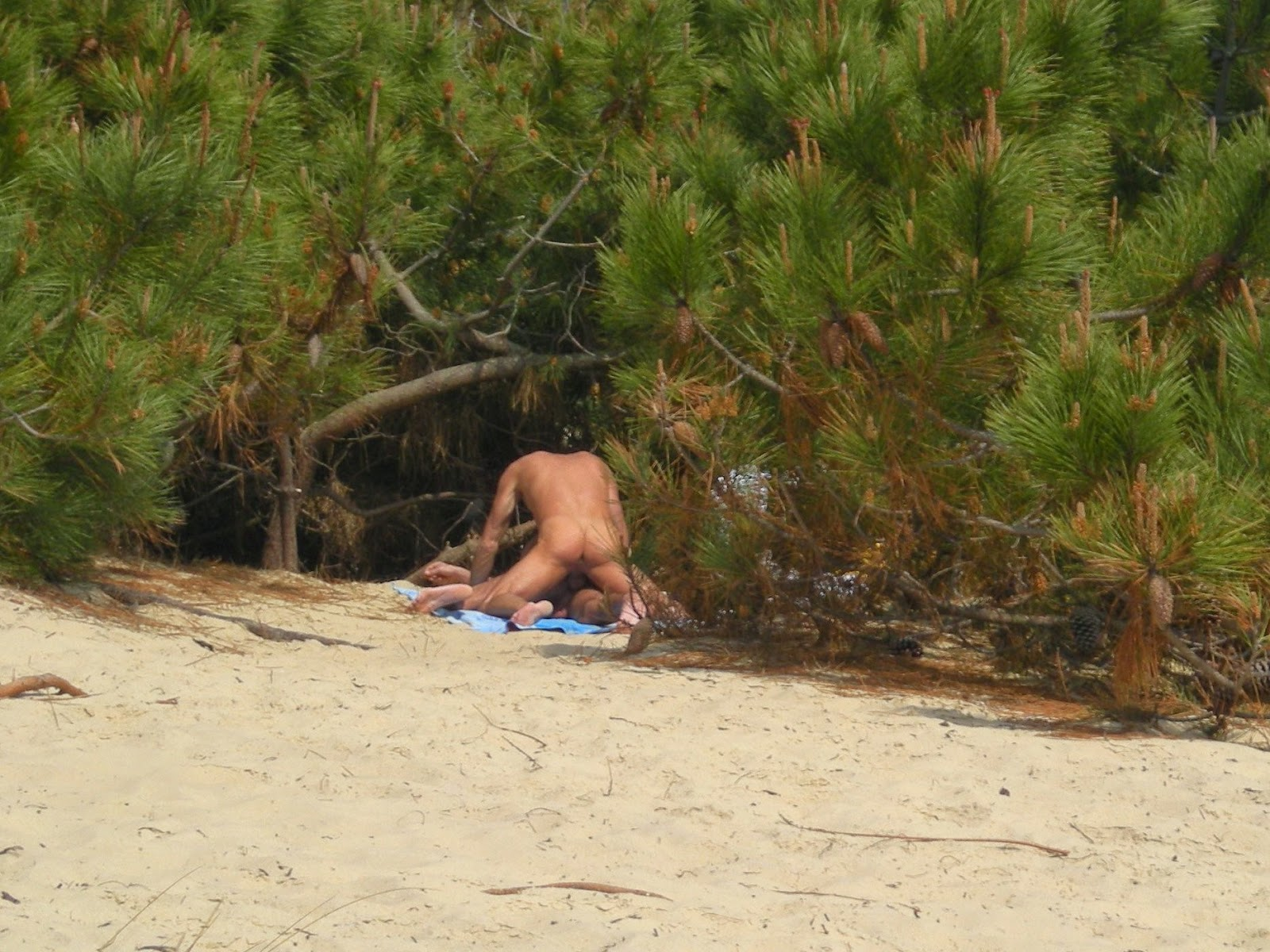 Gay men fucking nudist beach