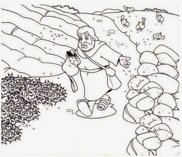 seed coloring pages - photo#18