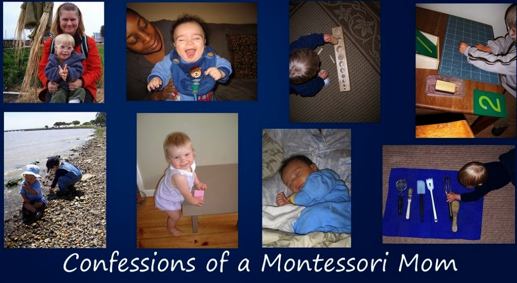 Lisa Nolan's Confessions of a Montessori Mom