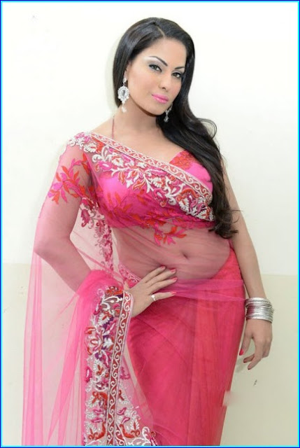 Veena Malik Latest Beautiful Photos in Transparent Saree
