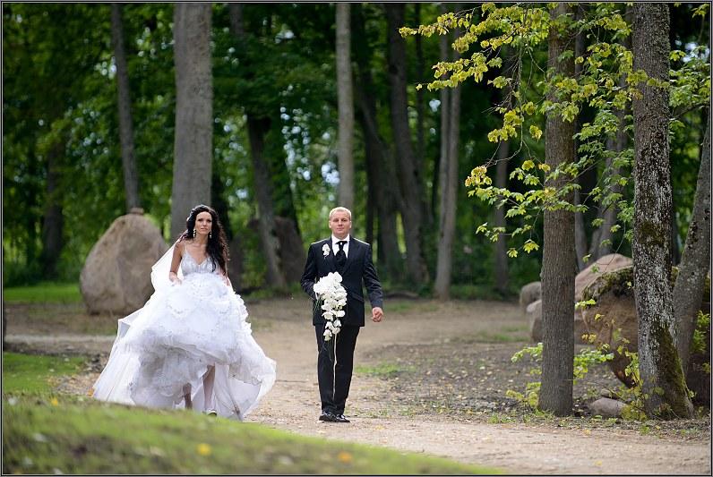 vestuvinė fotosesija taujėnų dvare
