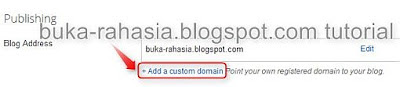 add custom domain