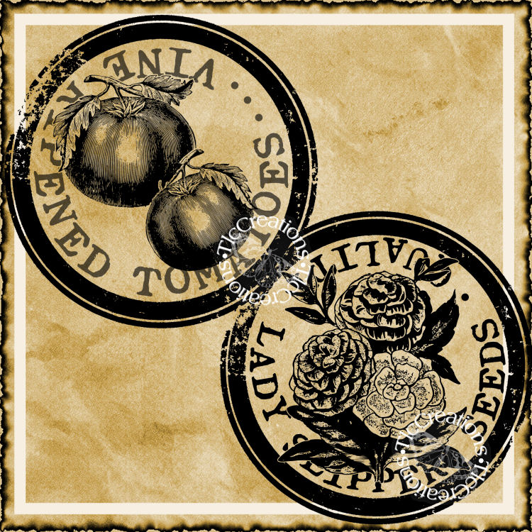 Seed Tomato, Flower Transfer