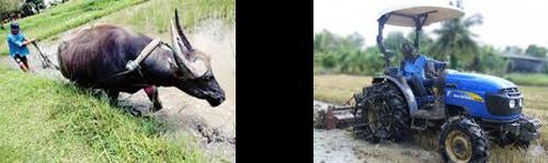 Pengaruh Teknologi Terhadap Kehidupan - bajak sawah
