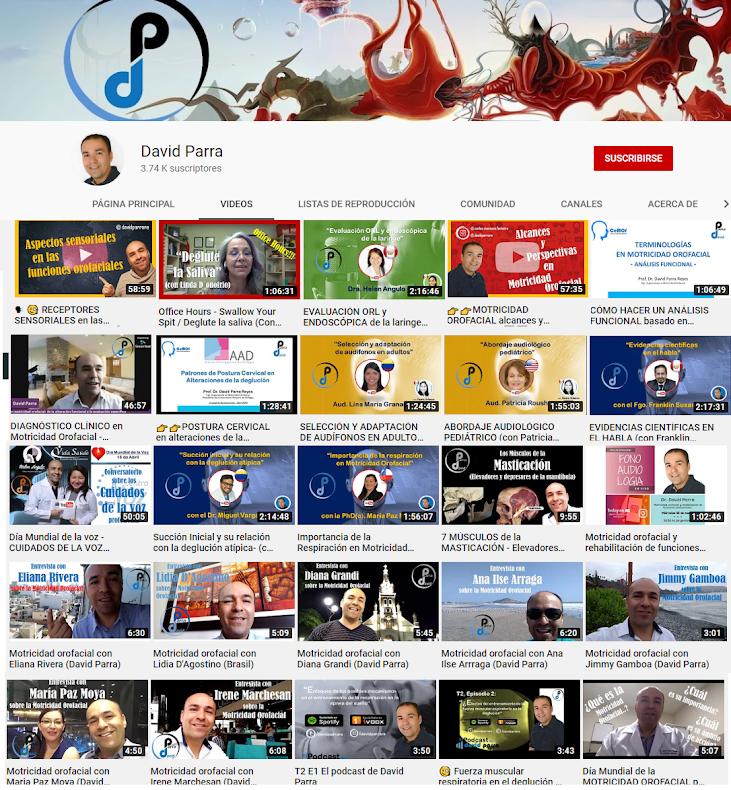Canal de Youtube de David Parra