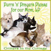 Lots Of Purrs and Prayers for Mom LP